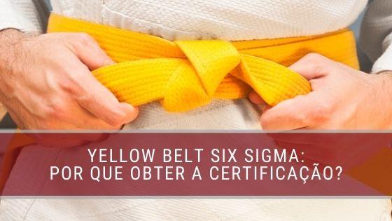 Por que você deve obter uma certificação Yellow Belt Six Sigma fm2s blog