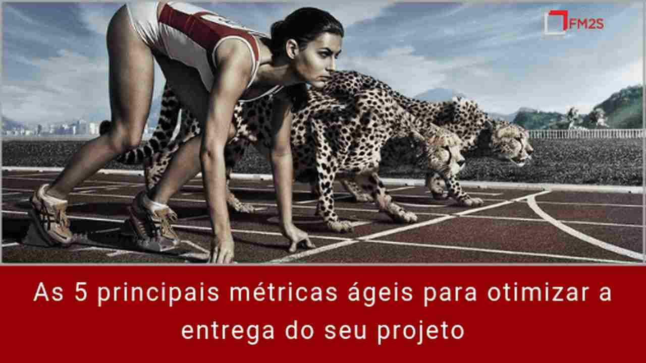 5-metricas-principais