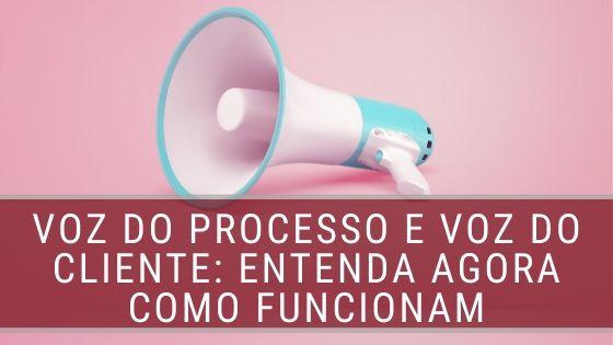 voz do processo e voz do cliente